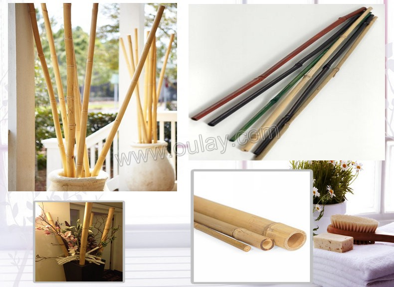 bamboo poles used for decoration