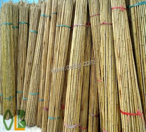 straight farming bamboo poles wholesale
