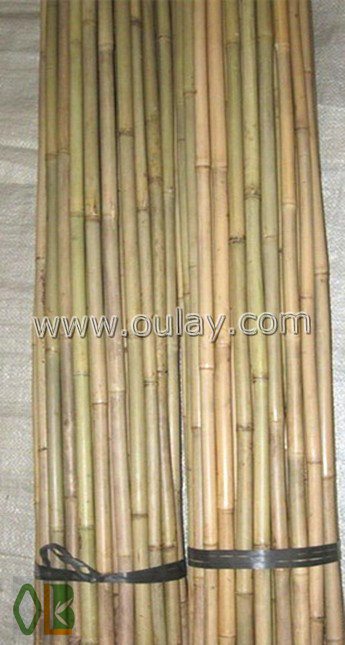 Natural raw tonkin bamboo cane