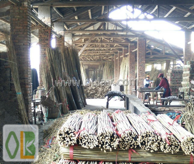 producing bamboo poles