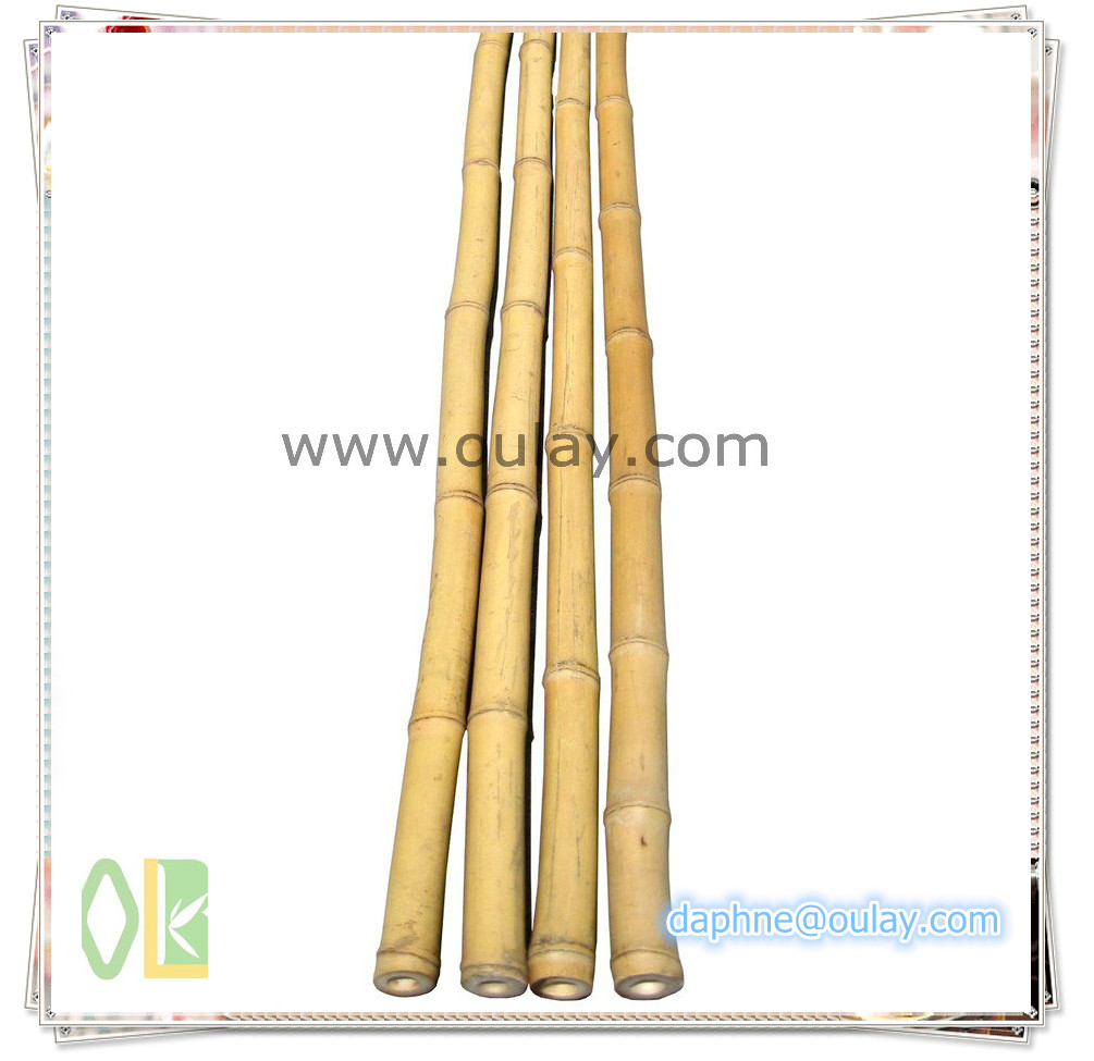 backyard scape in bamboo poles wholesale ,bamboo cane