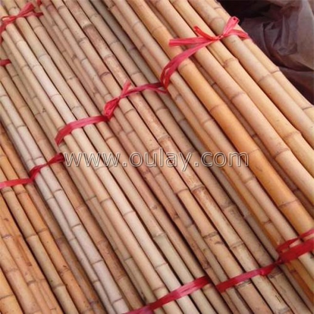 bamboo raw material