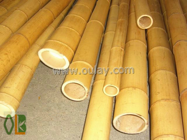 moso bamboo for builduings