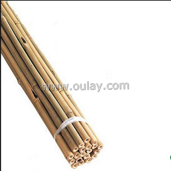 bamboo sticks for planting