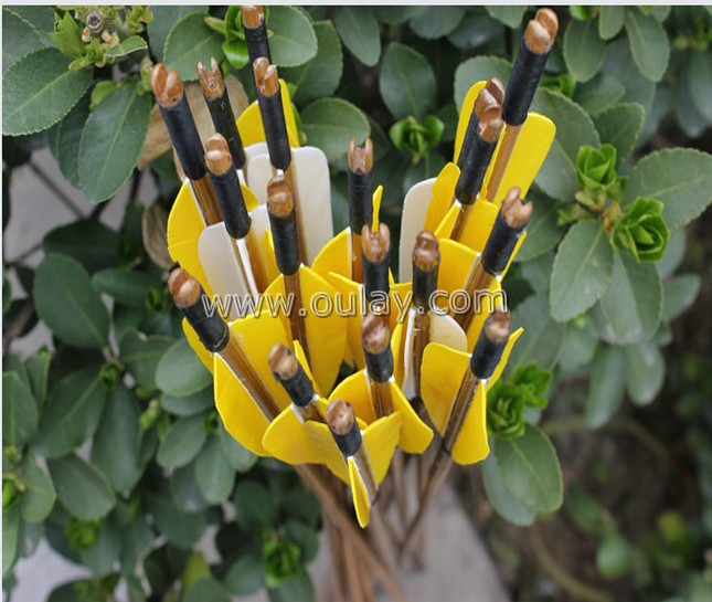 complete bamboo arrows