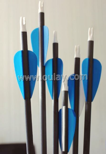 carbon arrows with 2 inch rubber vanes