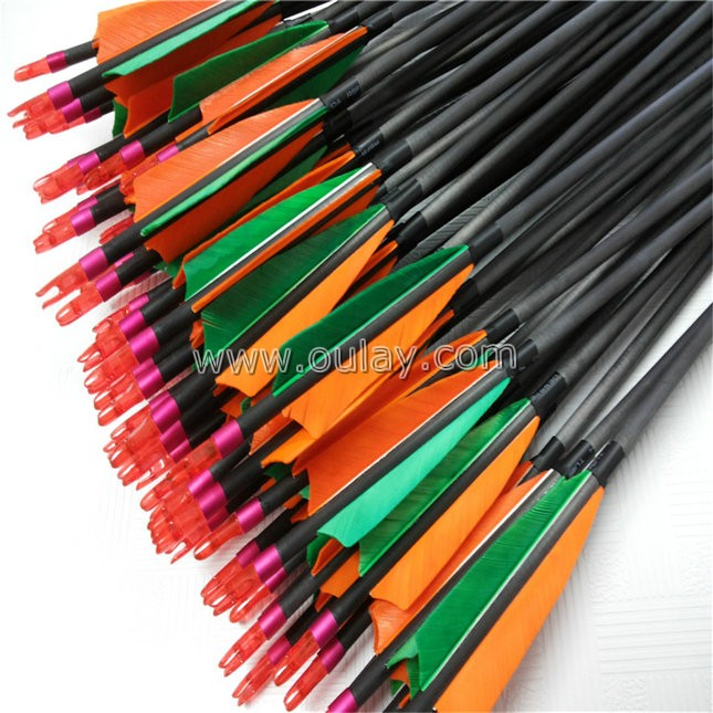 complete carbon arrows