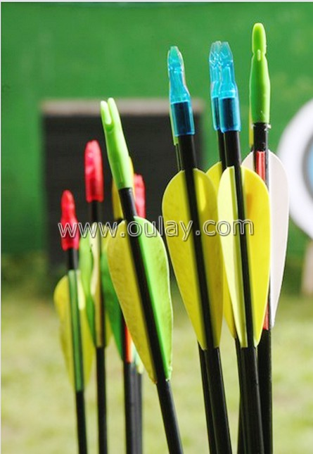 carbon arrows with rubber vanes