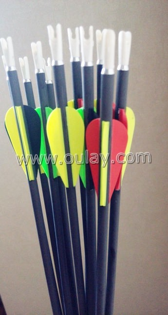 AEE vanes bowhunting carbon arrows