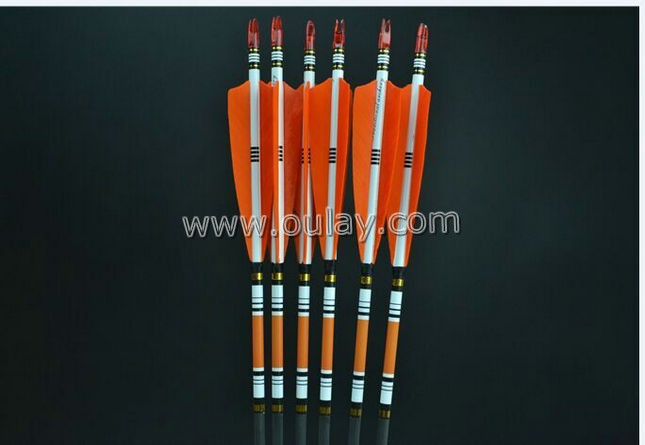 orange cresting arrows