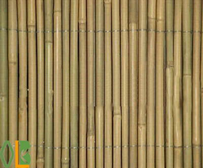 cheap and straight nature bamboo fence