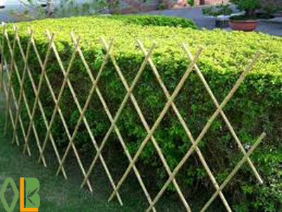 high quality and nature bamboo fence/bamboo fencing/tonkin bamboo fence