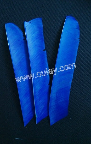 blue long nock feathers