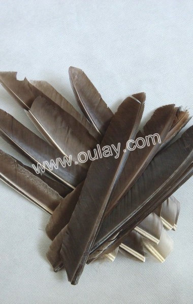 20~25cm left wing real arrow fletching feathers