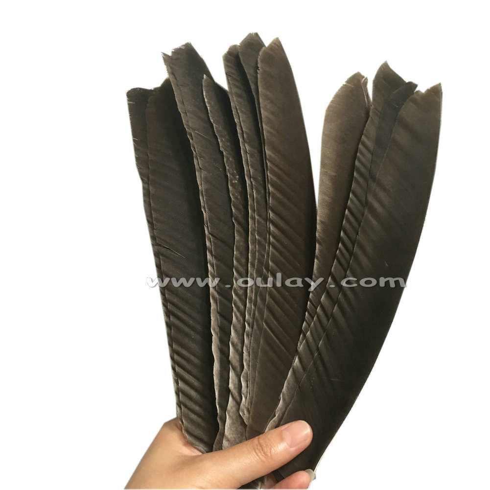 Nature gray full length archery turkey feather 18-23cm for sale