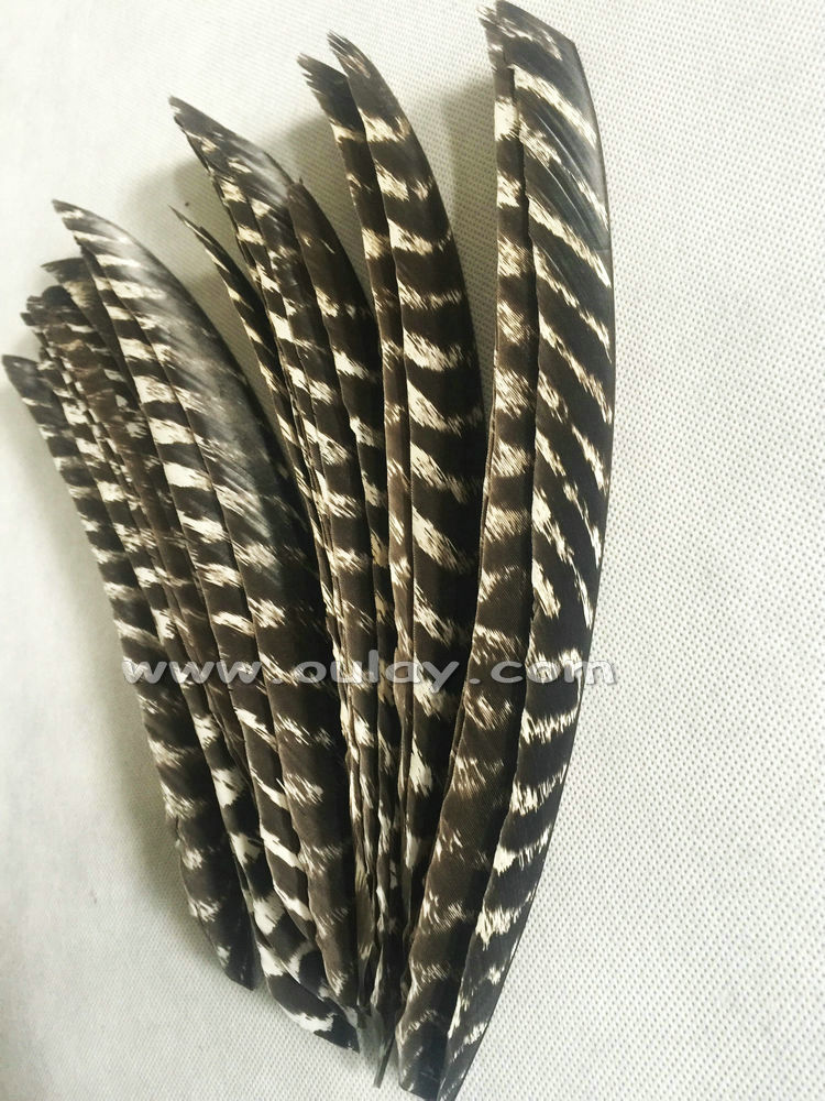 Trueflight Full Length Turkey Feathers Archery Left Pheasant Wings for sale